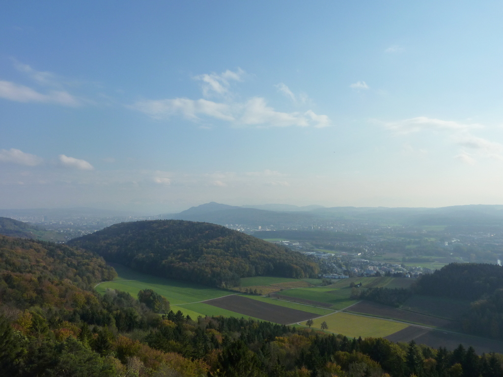 view from altberg tower