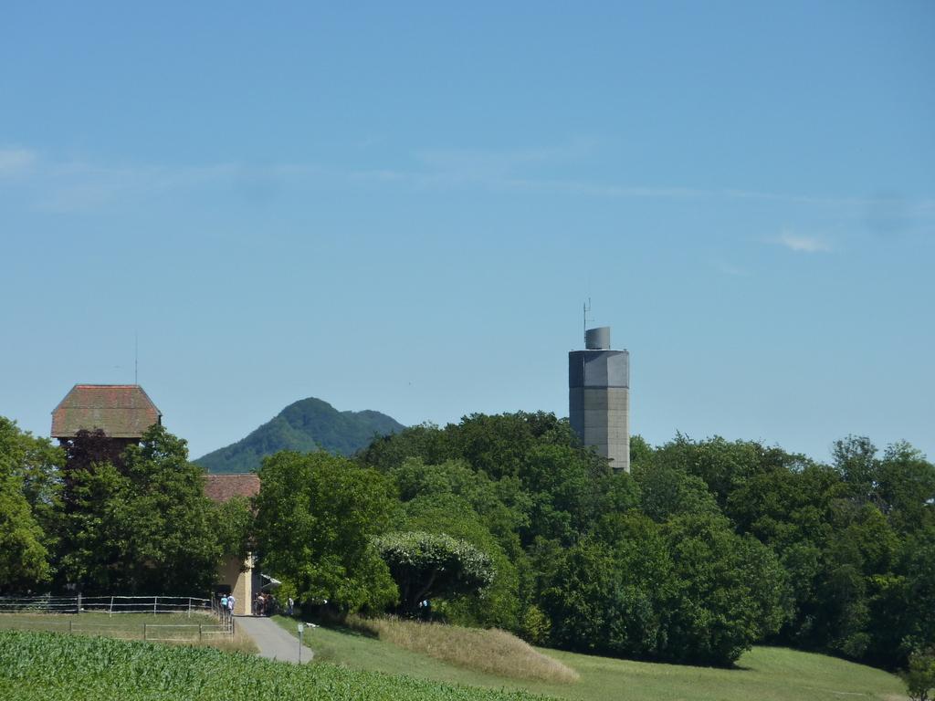 baldegger tower
