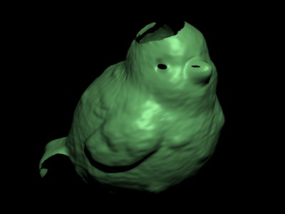 bird scanned
