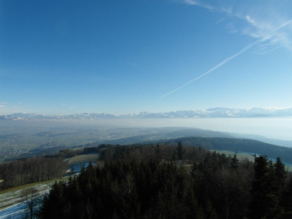 view from pfannenstiel
