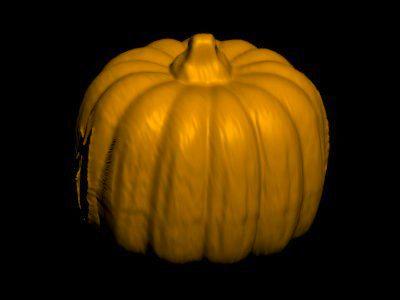 pumpkin scanned